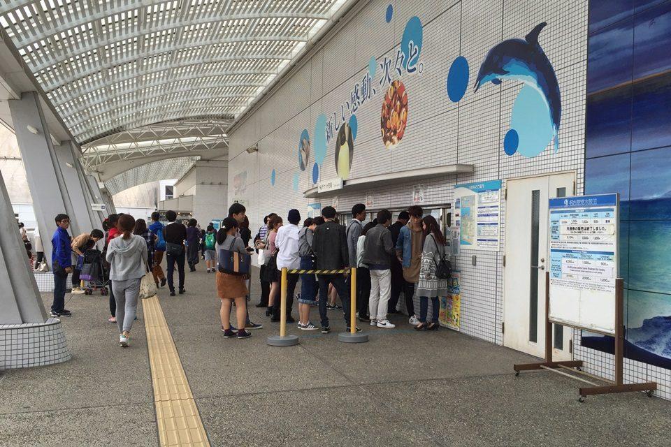 名古屋港水族館 チケット売り場