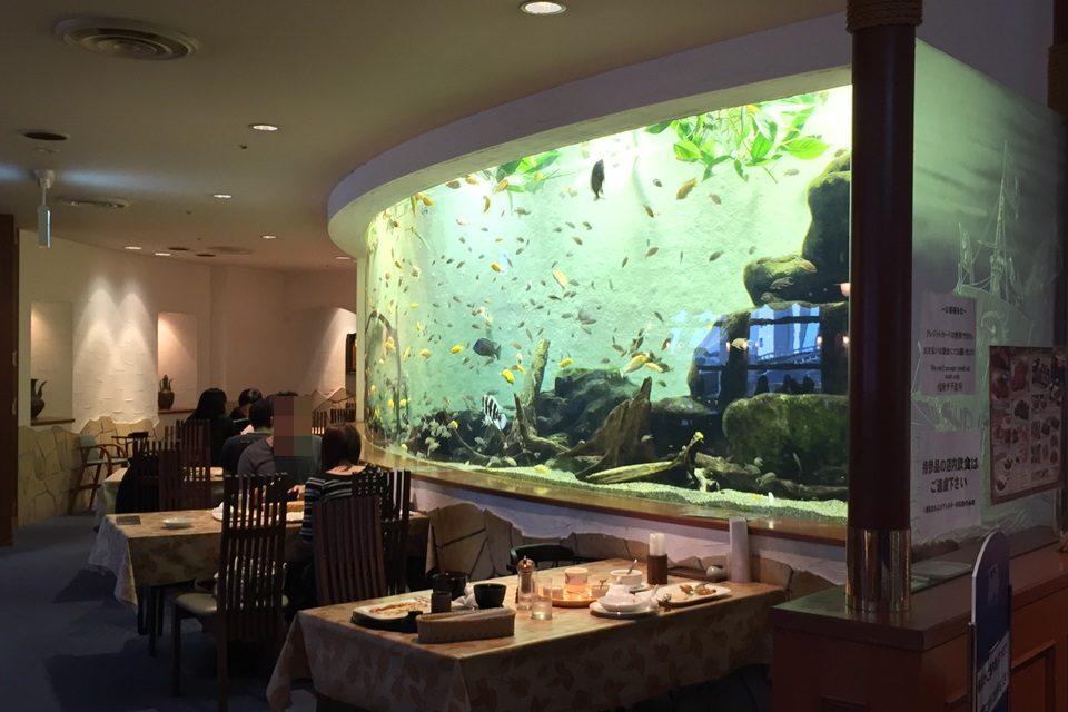 名古屋港水族館 アリバダ