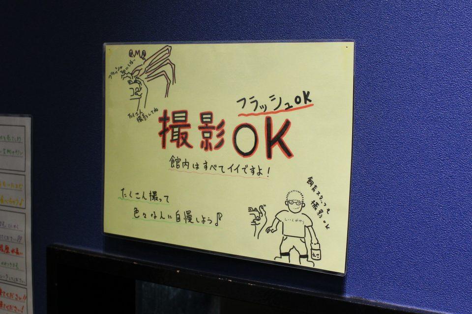 竹島水族館 撮影OK