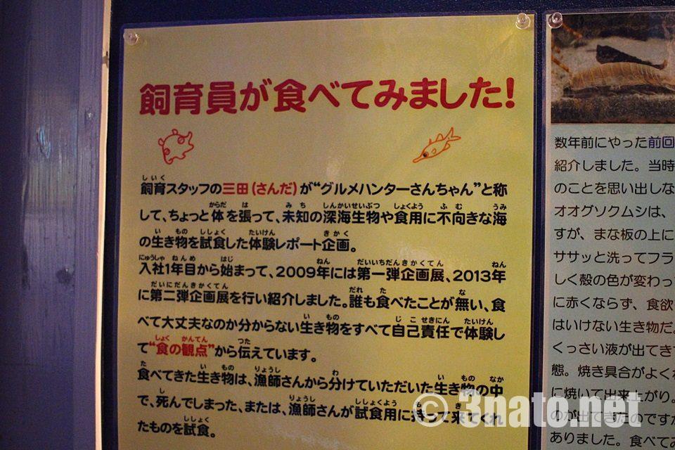 竹島水族館 掲示物