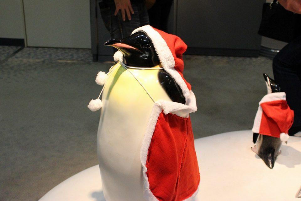 名古屋港水族館 サンタのペンギン
