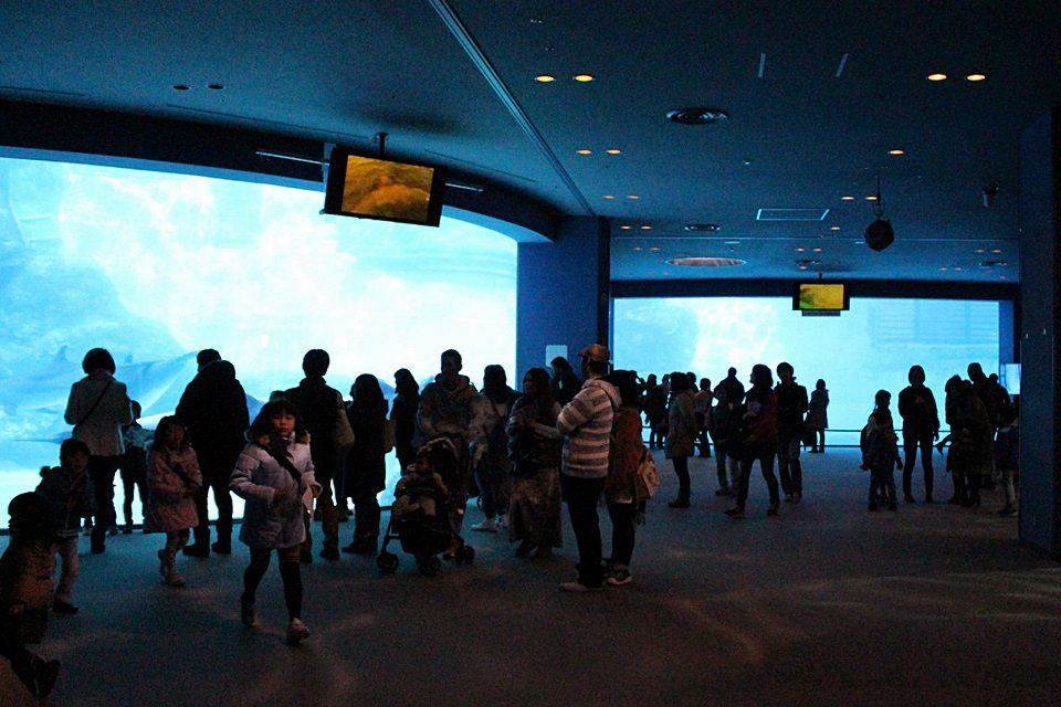 名古屋港水族館 入口ホール