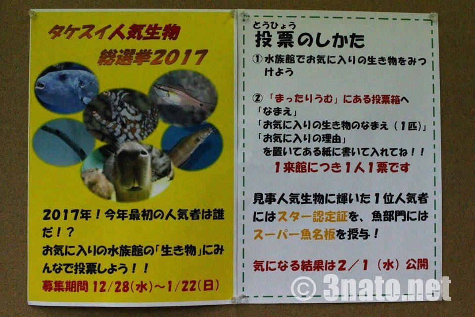 竹島水族館 総選挙2017告知