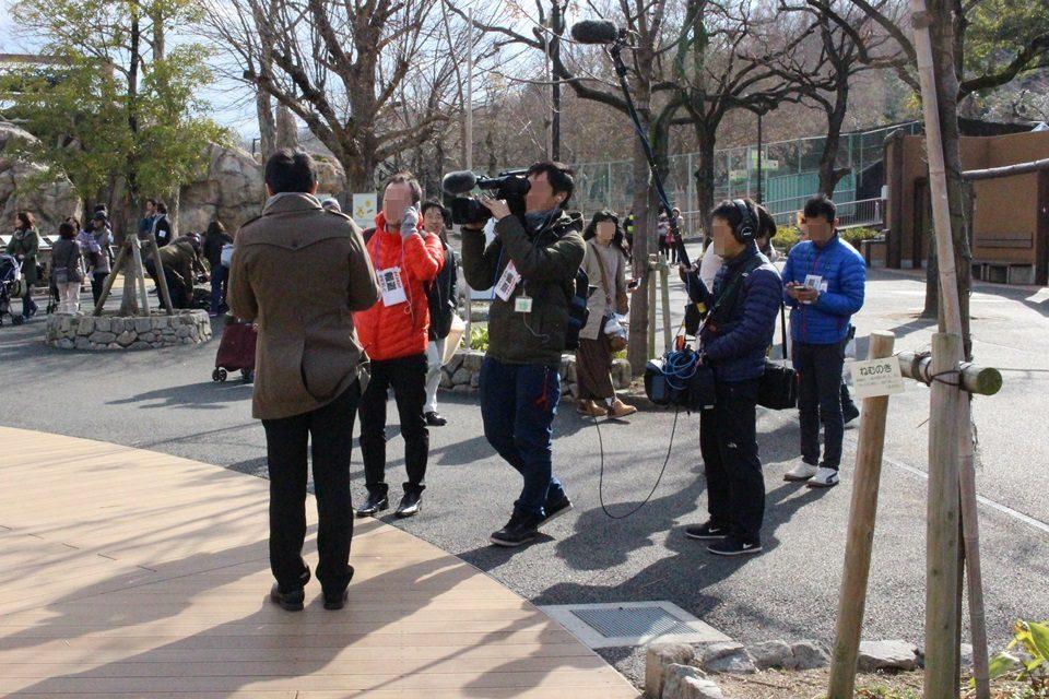 東山動物園再開の報道陣