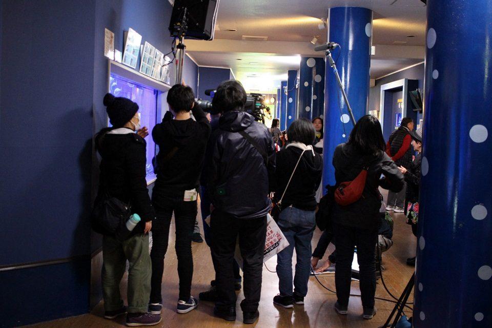 竹島水族館からNHK生放送