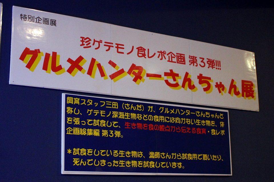 竹島水族館 特別企画展