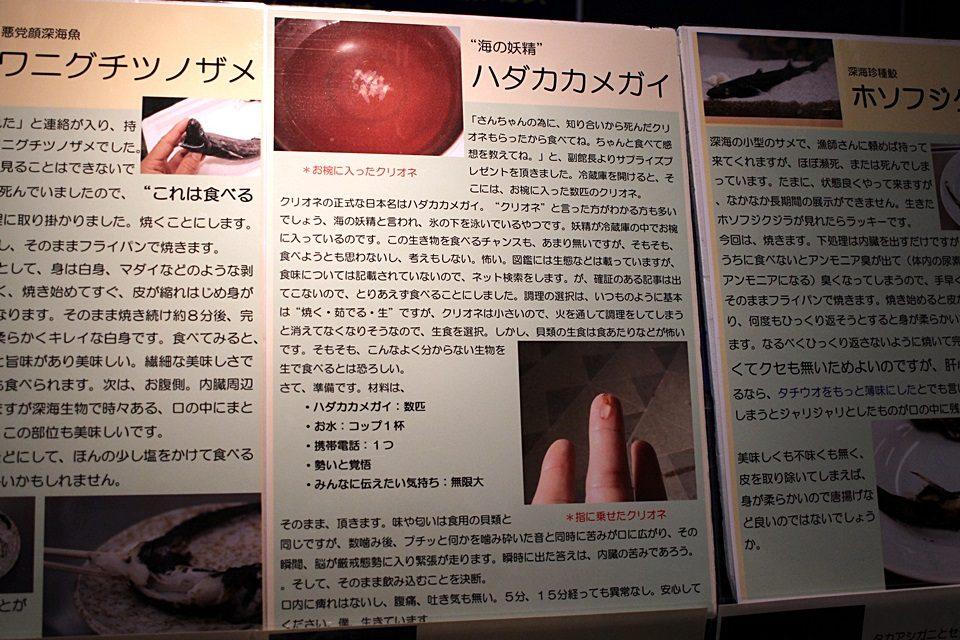 竹島水族館 クリオネの食レポ