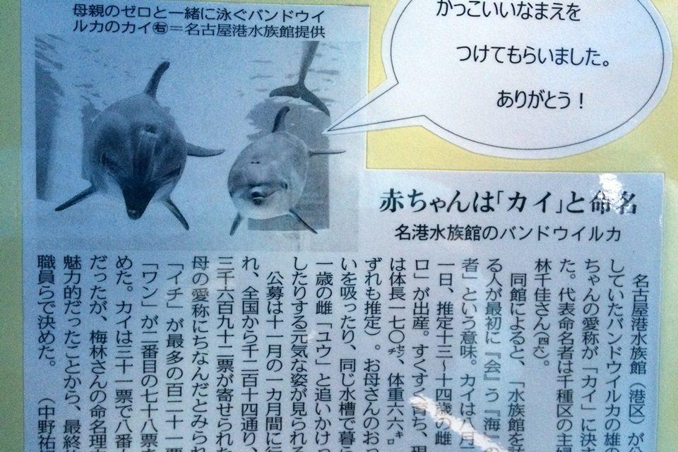 2014年12月10日の中日新聞