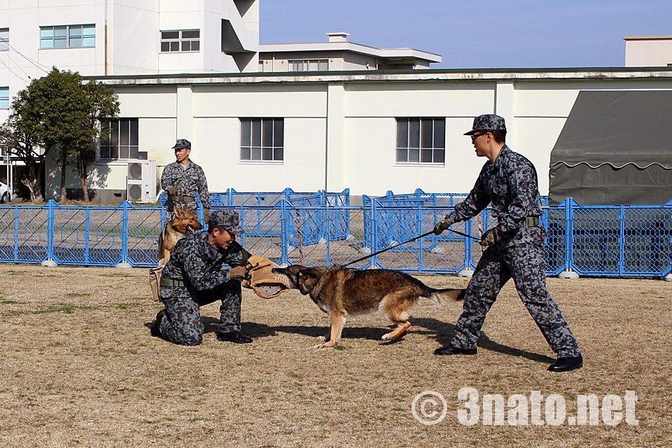 小牧基地オープンベース2017 警察犬