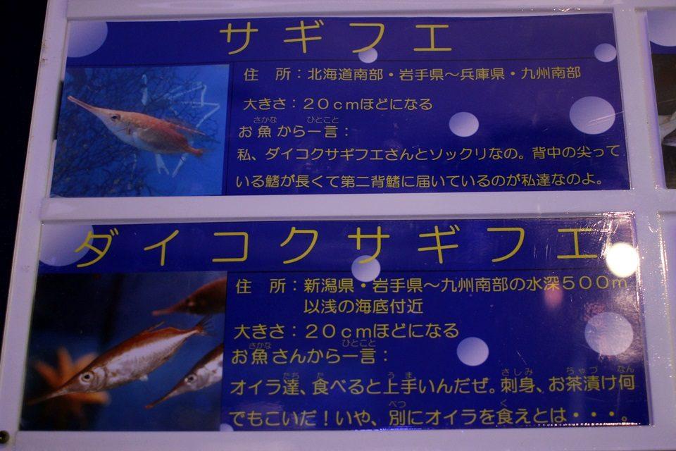 竹島水族館の掲示