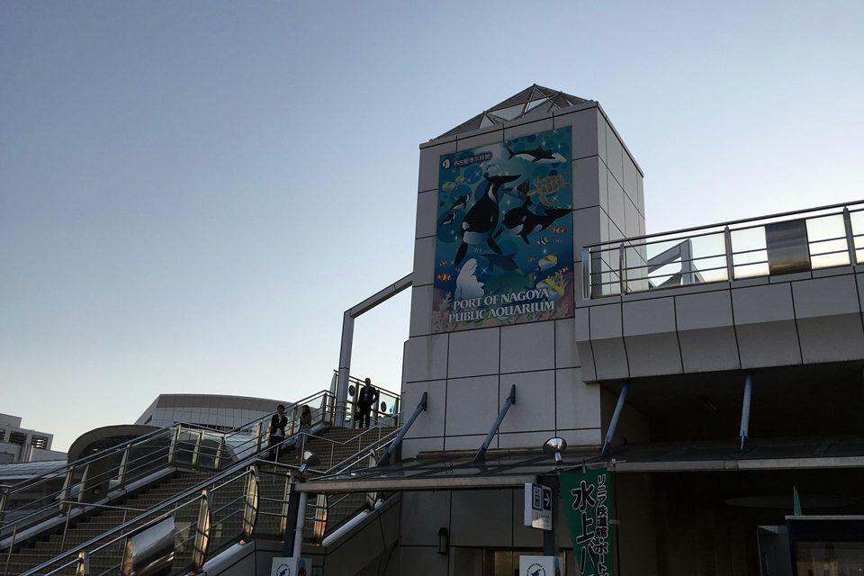 普段なら閉館時間の名古屋港水族館