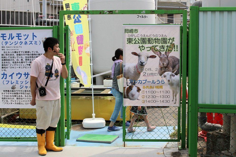 竹島水族館 岡崎市東公園動物園が出張