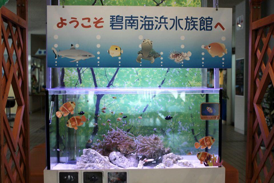 碧南海浜水族館 入口ホールの水槽