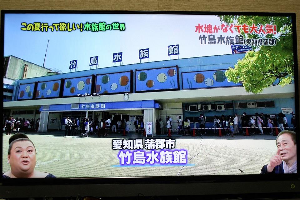 マツコの知らない世界 竹島水族館