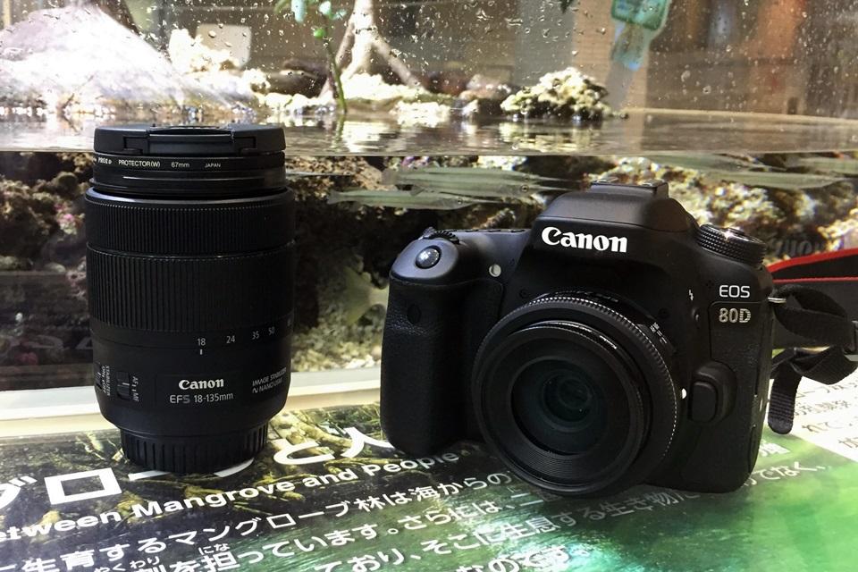 EOS 80D + EF-S24mm/f2.8 STM(名古屋港水族館にて)