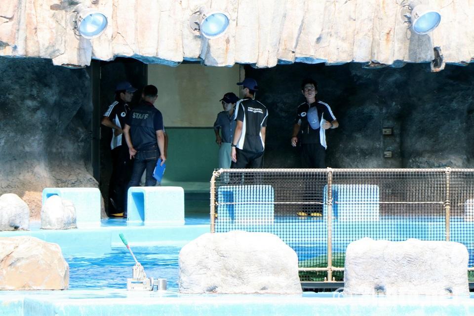 名古屋港水族館 シャチのトレーナーさんたち