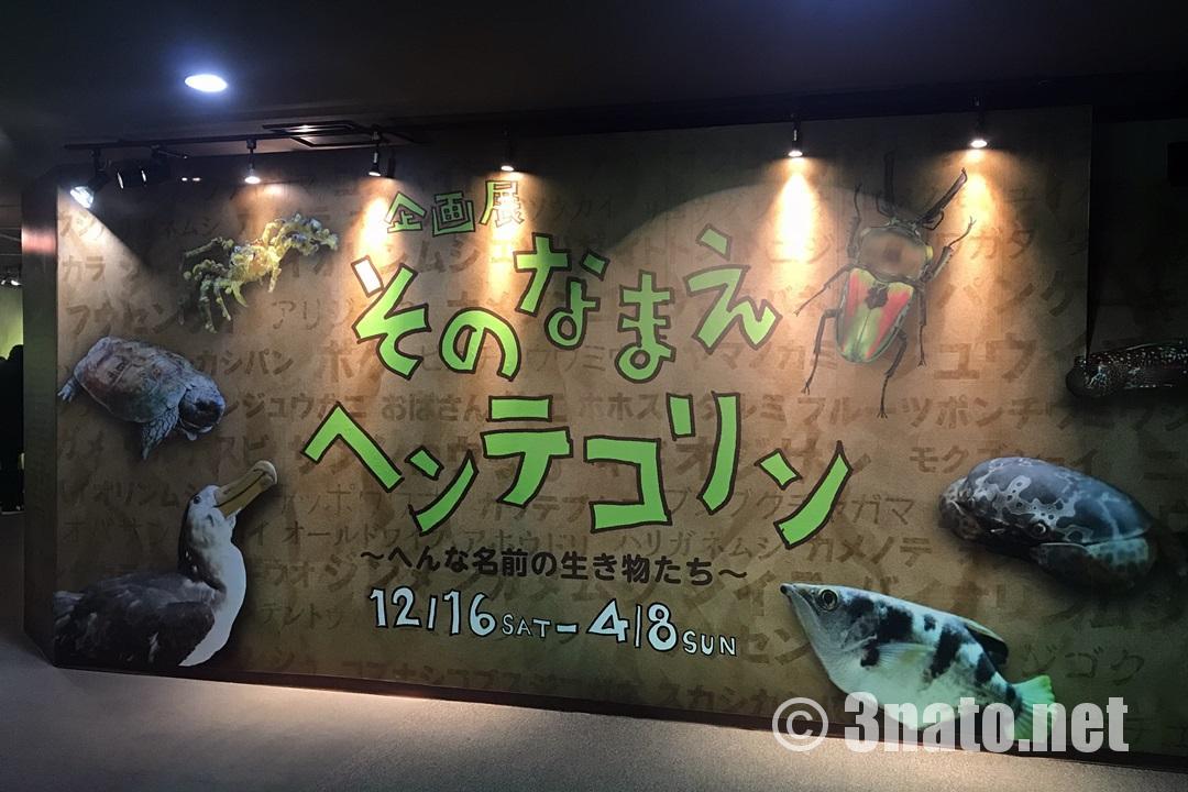 アクア・トトぎふ企画展