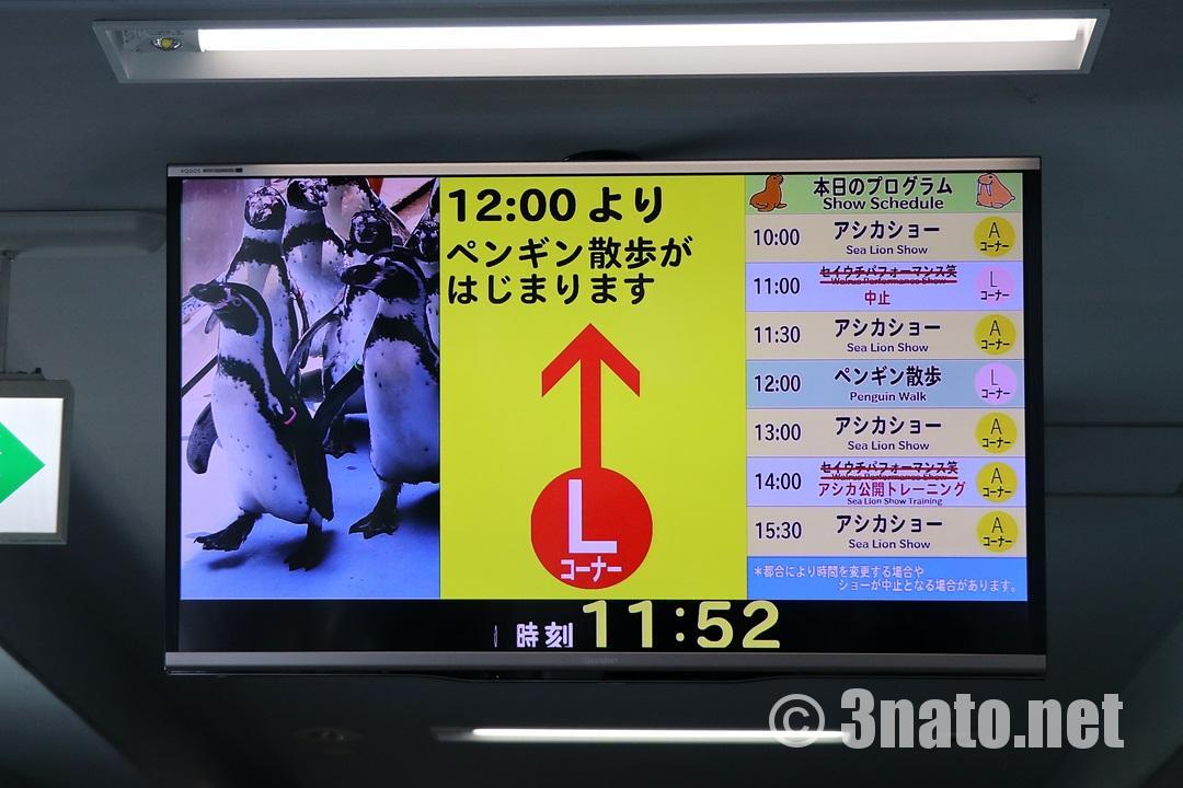 ショースケジュール(鳥羽水族館)撮影日:2018/05/06