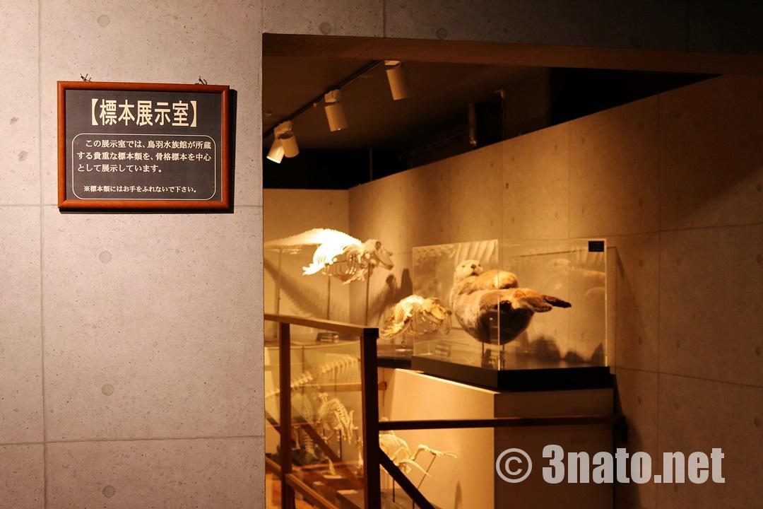 標本展示室(鳥羽水族館)撮影日:2018/05/06