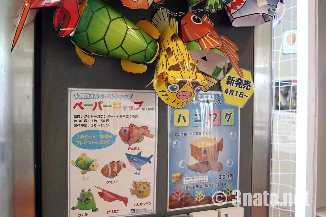 お魚のペーパーキャップ(碧南海浜水族館)撮影日:2018/06/01