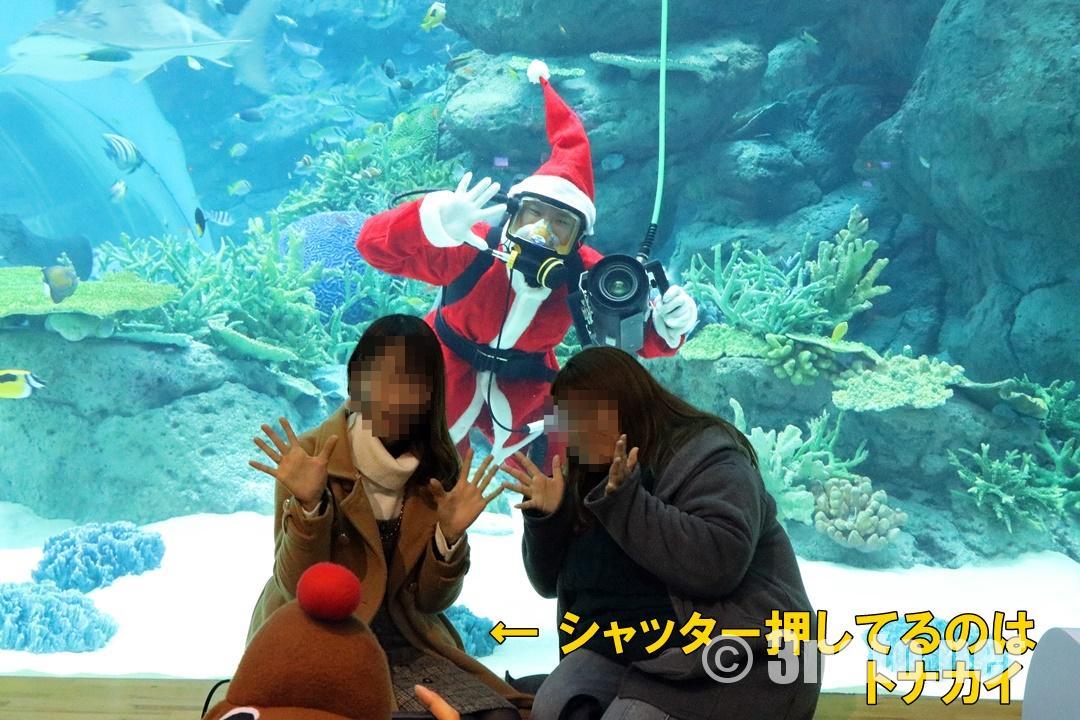 ダイバーコミュニケーションでのサンタと記念撮影(名古屋港水族館)撮影日:2018/12/15