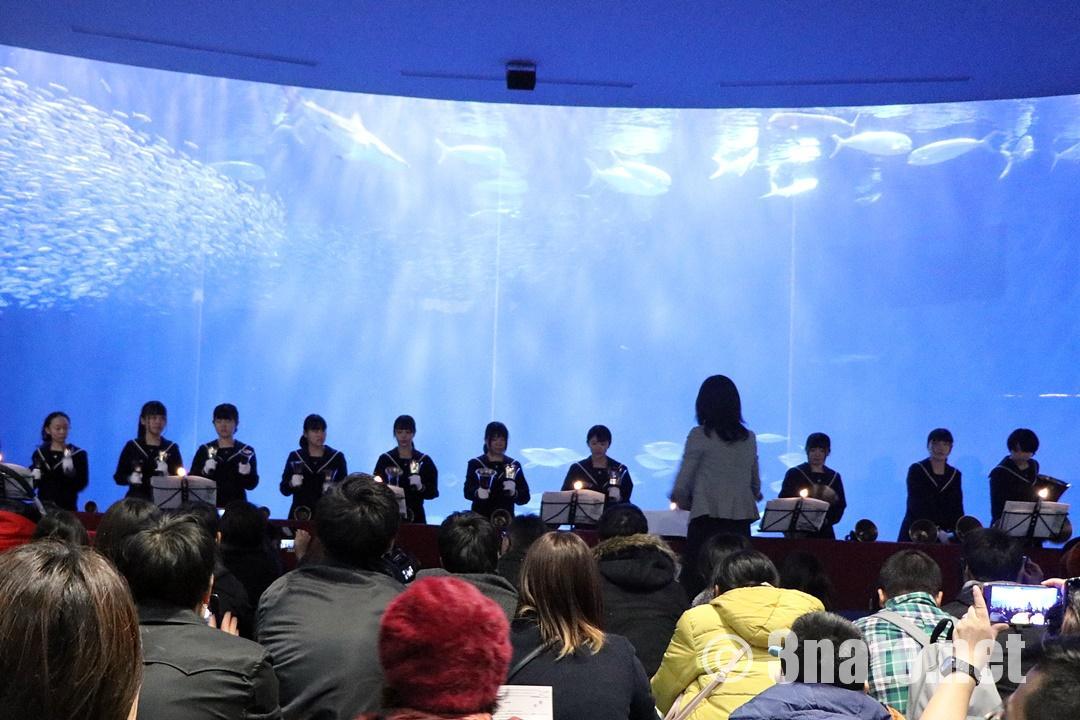 クリスマスアクアリウムコンサート(名古屋港水族館)撮影日:2018/12/15
