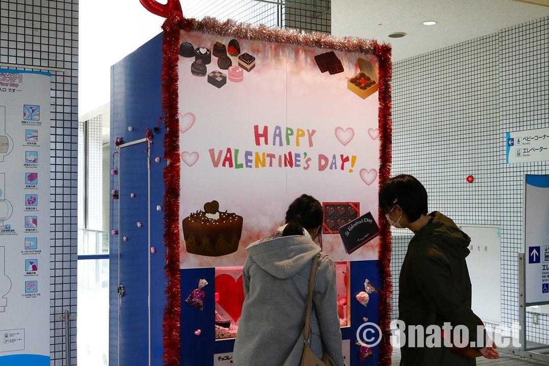 バレンタイン展示(名古屋港水族館)撮影日:2018/02/08